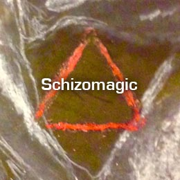 Schizomagic